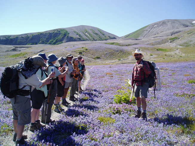 Guided Hikes and Programs