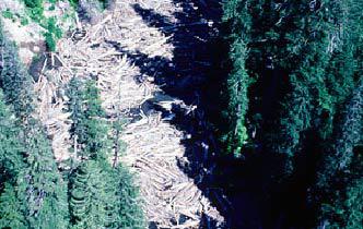 Lahars <br/> (Volcanic Mudflows)