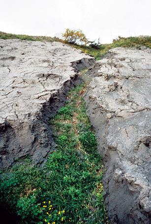 USGS / C. Dan Miller