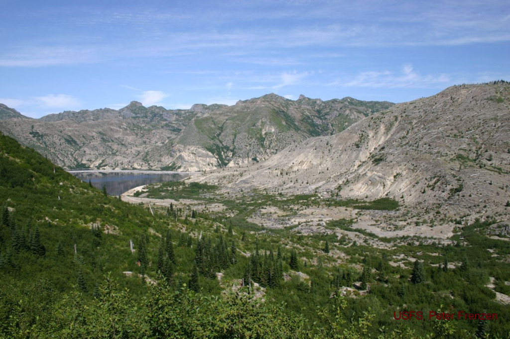 View a valley reshaped by a giant wave created by the landslide. Hike the only trail to Spirit Lake.