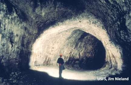 Explore a lava tube formed by eruptions 2000 years ago.