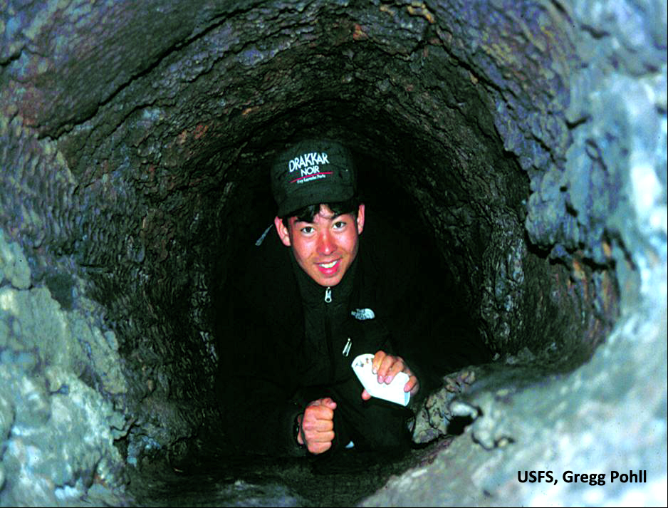 Crawl through a tunnel formed by a tree entombed by the lava flow.