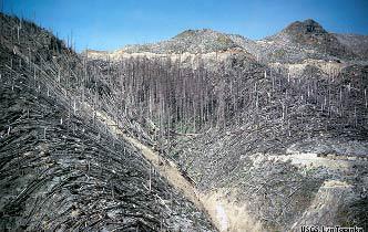 Lateral Blast <br/> (Blown Down Tree Zone)